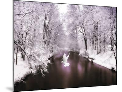 Peace on Earth-Jessica Jenney-Mounted Photographic Print