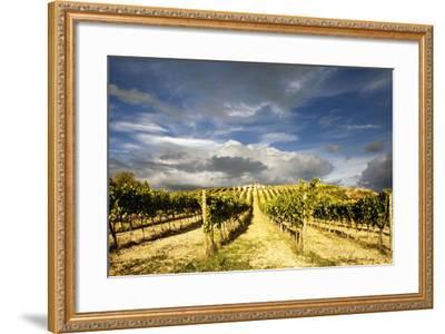 Italy-Maciej Duczynski-Framed Photographic Print
