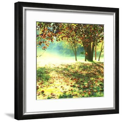 Colourful Morning-Incredi-Framed Photographic Print
