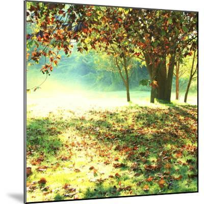 Colourful Morning-Incredi-Mounted Photographic Print