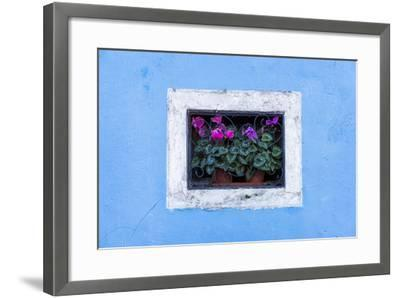 Caged and Framed-Michael Blanchette-Framed Photographic Print