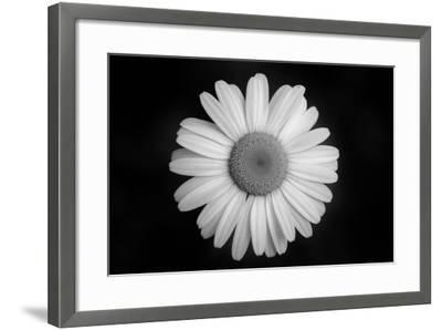 Ash River 08-Gordon Semmens-Framed Photographic Print