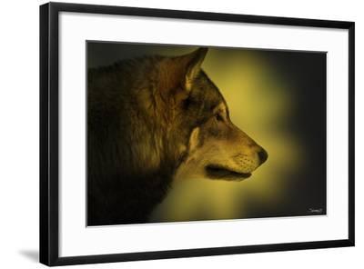 Wolf Profile HL1-Gordon Semmens-Framed Photographic Print