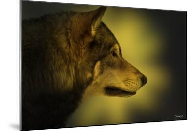 Wolf Profile HL1-Gordon Semmens-Mounted Photographic Print
