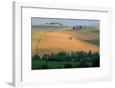 Tuscan Hill II-Robert Goldwitz-Framed Photographic Print