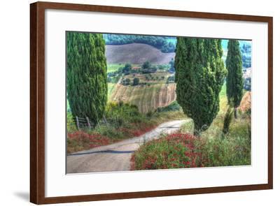 Tuscan Red Flower Road-Robert Goldwitz-Framed Photographic Print