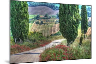 Tuscan Red Flower Road-Robert Goldwitz-Mounted Photographic Print