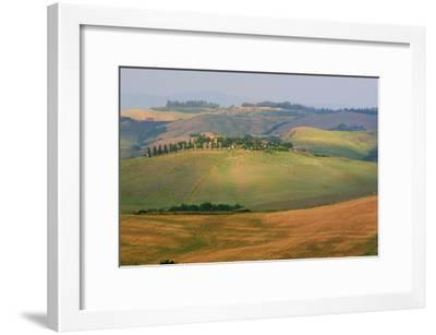 Tuscan Hill Sheep-Robert Goldwitz-Framed Photographic Print