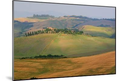 Tuscan Hill Sheep-Robert Goldwitz-Mounted Photographic Print