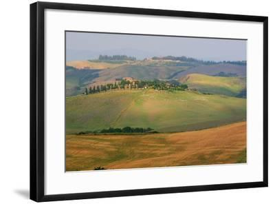 Tuscan Hill Sheep-Robert Goldwitz-Framed Photographic Print