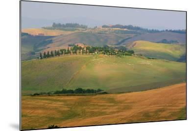 Tuscan Hill Sheep-Robert Goldwitz-Mounted Photographic Print