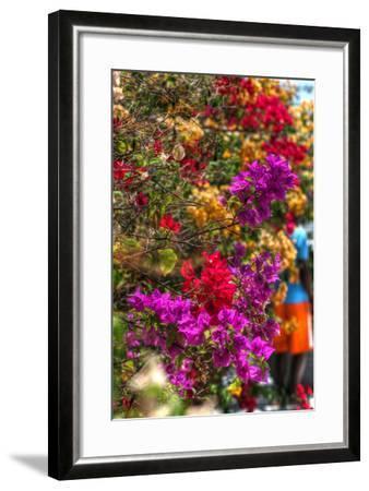Bougenvillia Vertical-Robert Goldwitz-Framed Photographic Print