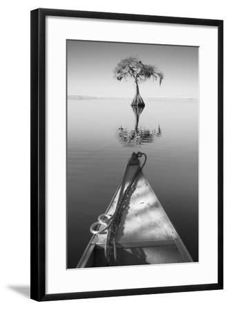 Alone with my Tree II-Moises Levy-Framed Photographic Print