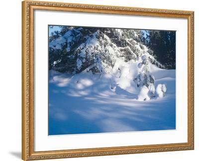 Buffalo River 53-Gordon Semmens-Framed Photographic Print