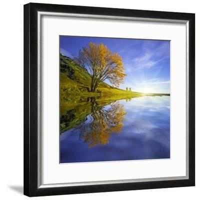 Yellow Tree Reflection-Moises Levy-Framed Photographic Print