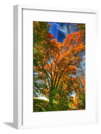 Autumn Borden Road Vertical-Robert Goldwitz-Framed Photographic Print