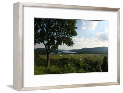 Hudson Highlands Tree Boscobell-Robert Goldwitz-Framed Photographic Print