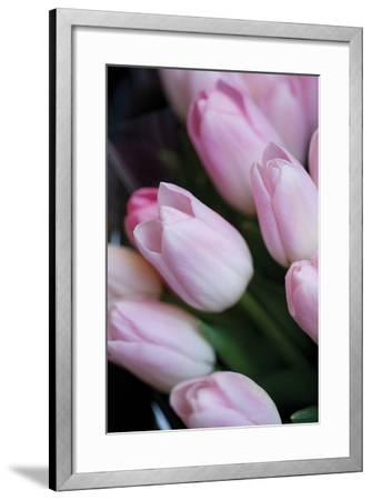 Soft Pink Tulips 1-Erin Berzel-Framed Photographic Print