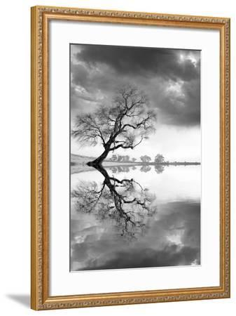 New Beginning Reflect-Moises Levy-Framed Photographic Print