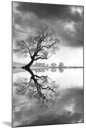 New Beginning Reflect-Moises Levy-Mounted Photographic Print