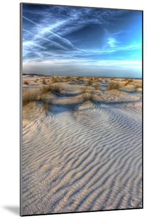 Dune Lines Vertical-Robert Goldwitz-Mounted Photographic Print