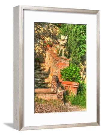 Tuscan Vertical Cat on Stairs-Robert Goldwitz-Framed Photographic Print