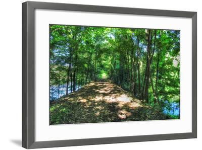 Railtrail Viaduct-Robert Goldwitz-Framed Photographic Print