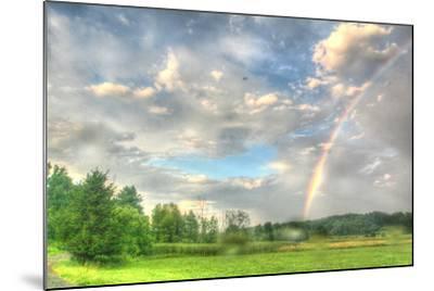 Rainbow and Heron-Robert Goldwitz-Mounted Photographic Print