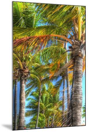 Palms Vertical-Robert Goldwitz-Mounted Photographic Print