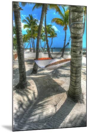 Higgs Beach Hammock-Robert Goldwitz-Mounted Photographic Print