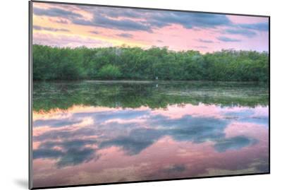 Heron and Mangroves-Robert Goldwitz-Mounted Photographic Print