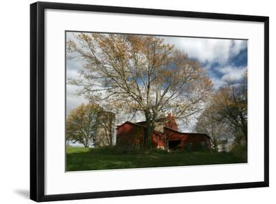 Early Spring Tree Barn-Robert Goldwitz-Framed Photographic Print