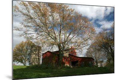 Early Spring Tree Barn-Robert Goldwitz-Mounted Photographic Print