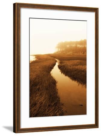 Harker's Island Marsh I-Alan Hausenflock-Framed Photographic Print