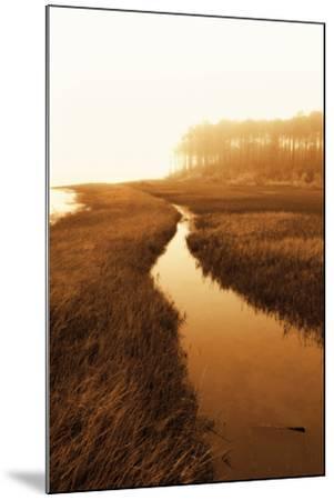 Harker's Island Marsh I-Alan Hausenflock-Mounted Photographic Print