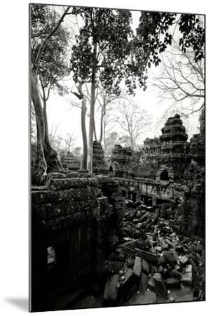 Ancient Ta Prohm IV-Erin Berzel-Mounted Photographic Print
