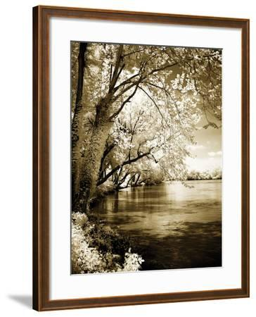 Spring on the River I-Alan Hausenflock-Framed Photographic Print