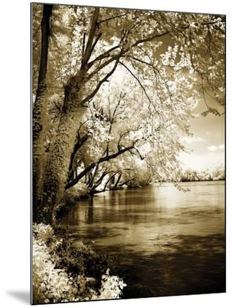 Spring on the River I-Alan Hausenflock-Mounted Photographic Print
