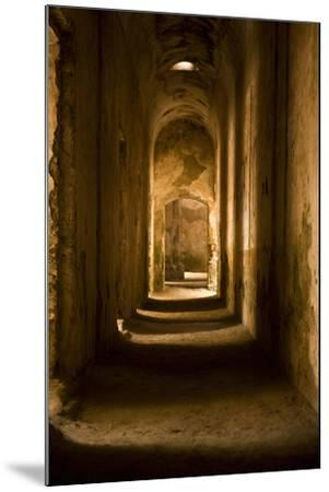 Down the Hall II-Karyn Millet-Mounted Photographic Print