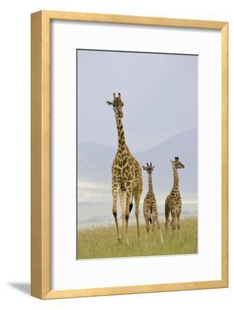 Savannah Strut-Susann Parker-Framed Photographic Print