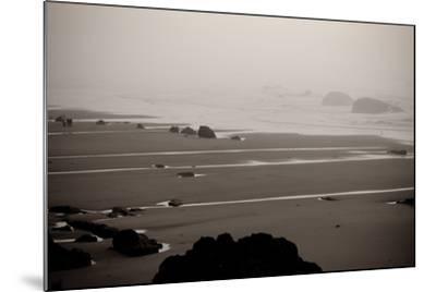 Beach at Seal Rock II-Erin Berzel-Mounted Photographic Print