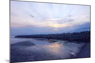Cedar Island Sunrise-Alan Hausenflock-Mounted Photographic Print
