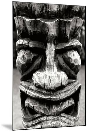 Totem II-Brian Moore-Mounted Photographic Print