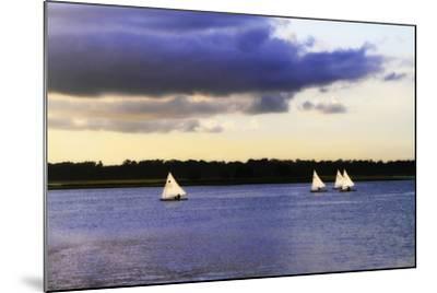 Sunfish Sailors I-Alan Hausenflock-Mounted Photographic Print