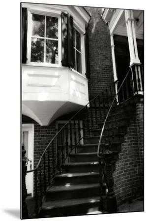 Savannah Style III-Alan Hausenflock-Mounted Photographic Print