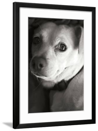 Second Glance Black and White-Karyn Millet-Framed Photographic Print