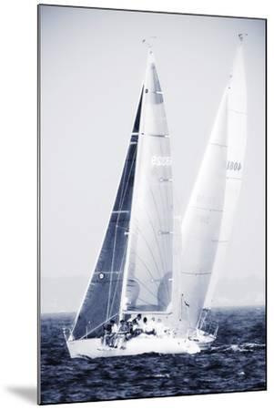 Summertime Race 5-Alan Hausenflock-Mounted Photographic Print