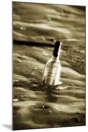 Message in a Bottle II-Alan Hausenflock-Mounted Photographic Print