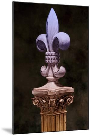 Fleur de Lis III-C^ McNemar-Mounted Photographic Print