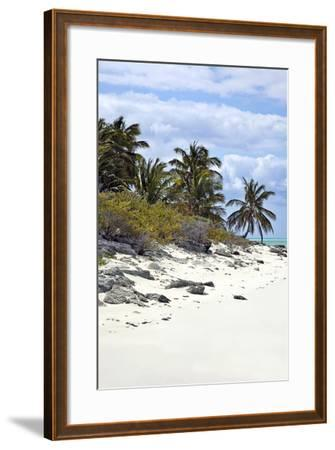 Schooner Cay Coastline-Larry Malvin-Framed Photographic Print